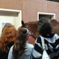 Asbury College and Equine Program