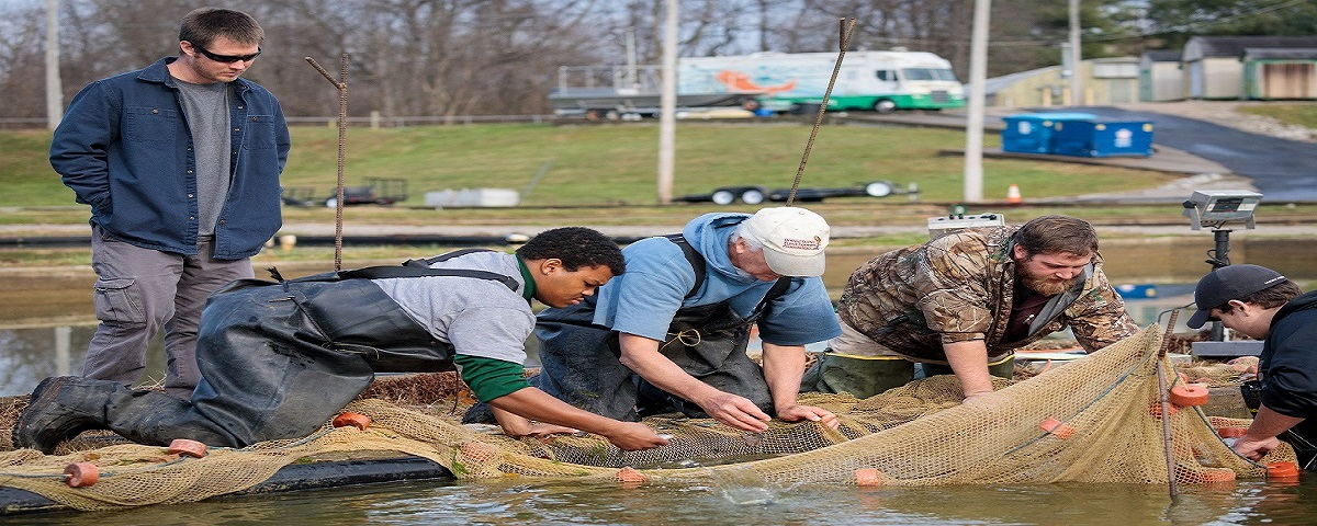FRANKFORT, Ky., -- Dr. Ken Semmens along with Research Assistant John Kelso, MAS student James Brown and AFE student Dawson Armstrong take inventory of Paddlefish by weighing the fish to track their growth from last year, Friday, Dec. 06, 2019 at the Aquaculutre Production Facility in FRANKFORT.