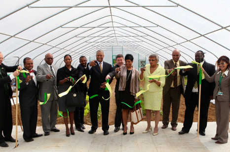 Members of KSU's Board of Regents cut the ribbon to open KSU's new Campus High Tunnel complex.