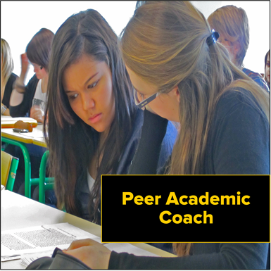 PeerAcademicCoach