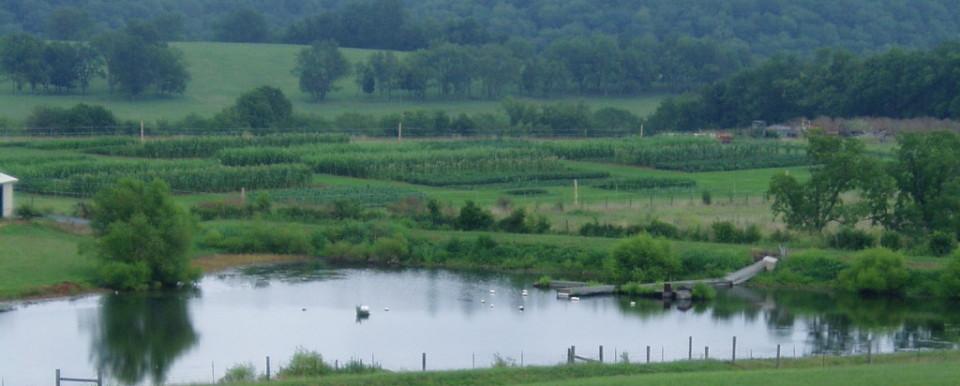 Research farm plots