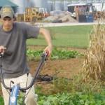 On-farm Biofuel Plots