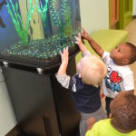 Toddlers playing with a fish tank