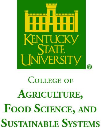 CAFSSS Logo_4C