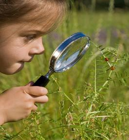 Child looking through a microscope at grass - Environmental Education