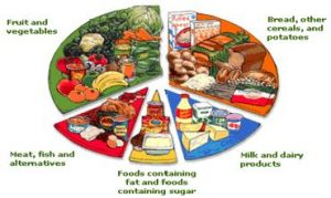 Picture of Food Chart for Food Safety and Human Health