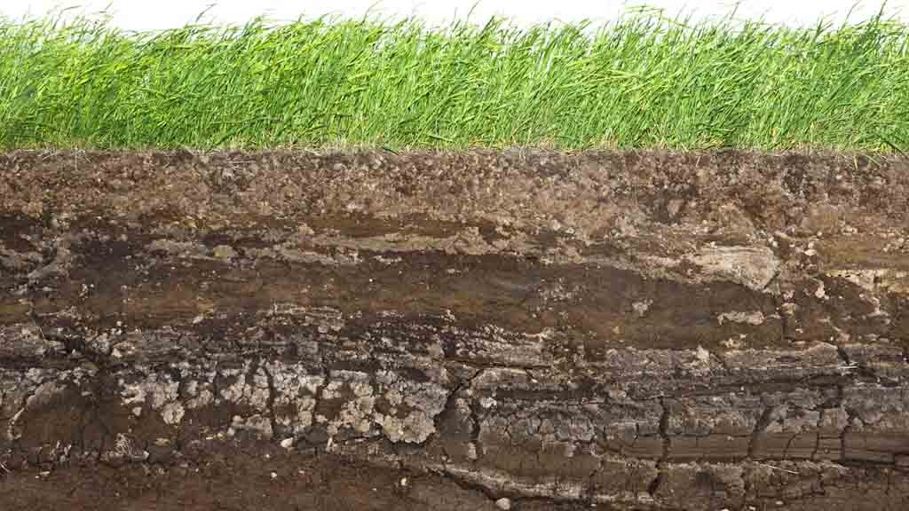 soil and water Soil and water research (swr) issn 1801-5395 (print) issn 1805-9384 (on-line) an international peer-reviewed journal published under the auspices of the czech academy of agricultural sciences.