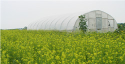 Past Projects - Picture of Green House and Field