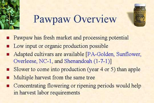 Pawpaw overview slide