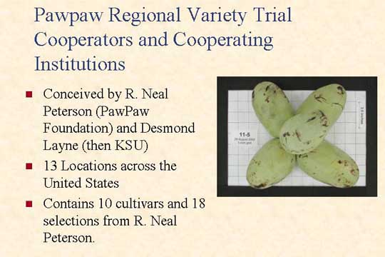 Pawpaw Regional Variety Trial Cooperators and Cooperating Institutions - Picture of Slide 17