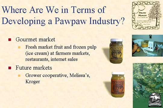 Slide of where are we in terms of developing a pawpaw industry 2