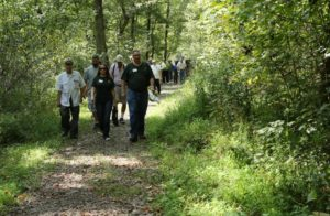 Pre-conference tour of wild pawpaw patch at Cove Spring Park in Frankfort, Kentucky