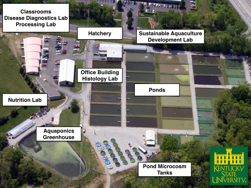 Picture of Aquaculture Facilities