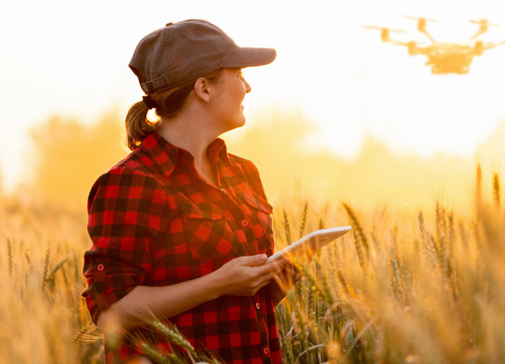 Agriculture-Communications - Women flying a drone in a wheat field
