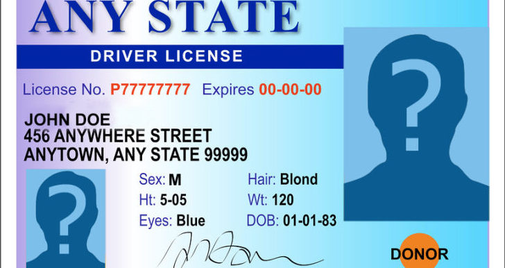 Picture of sample driver's license