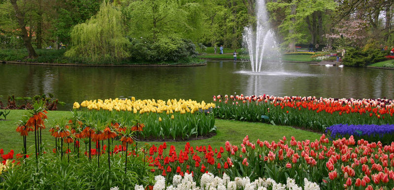 Picture of a garden with a water fountain