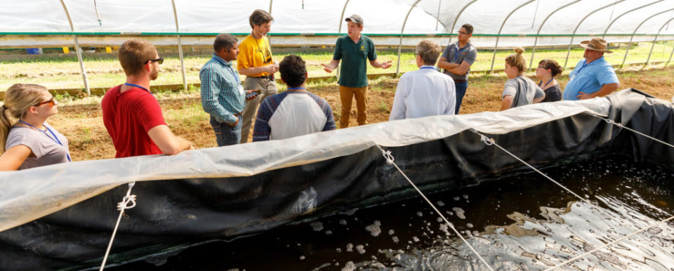 FRANKFORT, Ky., -- Nathan Kring KYSU aquaculture students give tours of the High Tunnels on campus that house hemp, and marine shrimp as part of a shrimp farming workshop, Friday, Sept. 14, 2018 at the Harold R. Benson Research and Demonstration Farm in FRANKFORT.