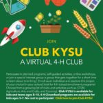 4-H Club KYSU Virtual Conference. November 10-12, 2020. Preparing Today's Youth for Tomorrow's World. The 4-H Virtual Conference sessions will be a one stop shop for personal growth and empowerment, impact focused and youth-centered.